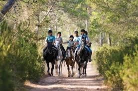 excursiones a caballo en Valencia